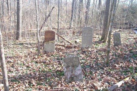 *BUCHANAN CEMETERY VIEW 2,  - Lincoln County, Tennessee |  *BUCHANAN CEMETERY VIEW 2 - Tennessee Gravestone Photos