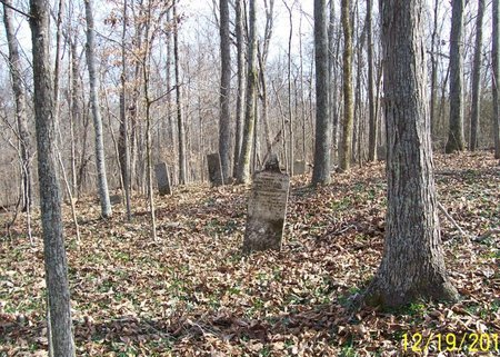 *BUCHANAN OVERVIEW,  - Lincoln County, Tennessee |  *BUCHANAN OVERVIEW - Tennessee Gravestone Photos