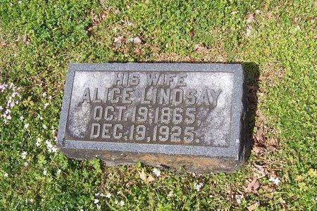 CARPENTER, ALICE - Lincoln County, Tennessee | ALICE CARPENTER - Tennessee Gravestone Photos