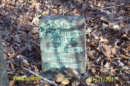 CARTER, CHARLOTT - Lincoln County, Tennessee   CHARLOTT CARTER - Tennessee Gravestone Photos