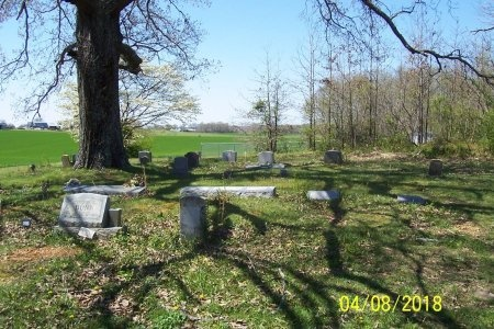 *CARTER OVERVIEW,   - Lincoln County, Tennessee |   *CARTER OVERVIEW - Tennessee Gravestone Photos