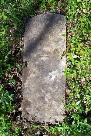 CLARK, CHARLIE - Lincoln County, Tennessee | CHARLIE CLARK - Tennessee Gravestone Photos
