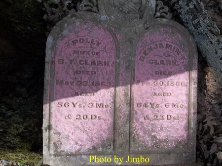 CLARK, POLLY - Lincoln County, Tennessee | POLLY CLARK - Tennessee Gravestone Photos