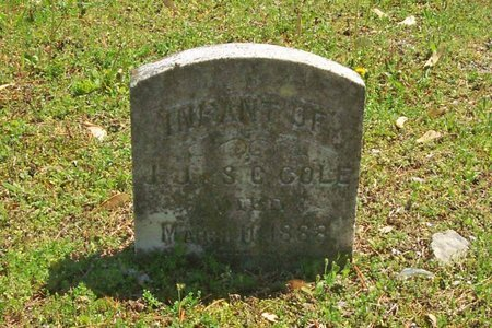 COLE, INFANT - Lincoln County, Tennessee | INFANT COLE - Tennessee Gravestone Photos