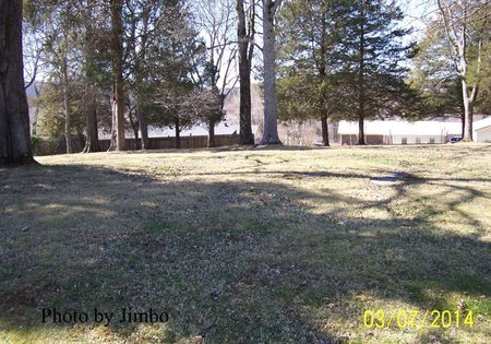 *CUNNINGHAM OVERVIEW 2,  - Lincoln County, Tennessee |  *CUNNINGHAM OVERVIEW 2 - Tennessee Gravestone Photos