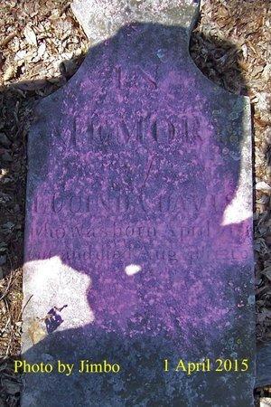 DAVIS, LUCINDA - Lincoln County, Tennessee | LUCINDA DAVIS - Tennessee Gravestone Photos