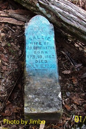 EDMIASTON, SALLIE - Lincoln County, Tennessee | SALLIE EDMIASTON - Tennessee Gravestone Photos