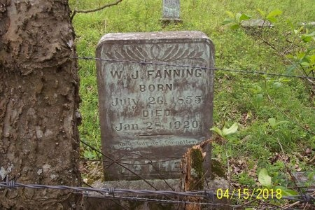 FANNING, WILLIAM JOHNSON - Lincoln County, Tennessee | WILLIAM JOHNSON FANNING - Tennessee Gravestone Photos