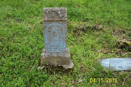 FRANKLIN, MALISSA ANNE - Lincoln County, Tennessee | MALISSA ANNE FRANKLIN - Tennessee Gravestone Photos