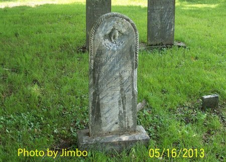 FREEMAN, DRUCILLA - Lincoln County, Tennessee | DRUCILLA FREEMAN - Tennessee Gravestone Photos