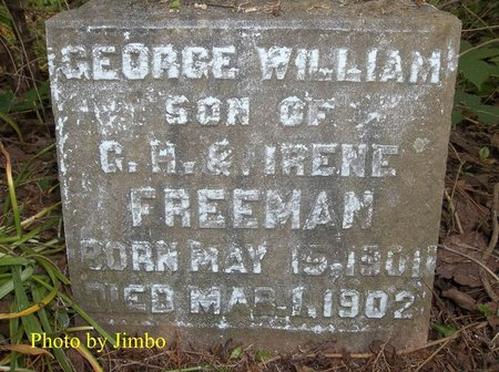 FREEMAN, GEORGE WILLIAM - Lincoln County, Tennessee | GEORGE WILLIAM FREEMAN - Tennessee Gravestone Photos