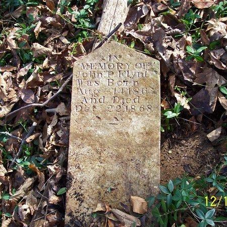 FYNT, JOHN - Lincoln County, Tennessee | JOHN FYNT - Tennessee Gravestone Photos
