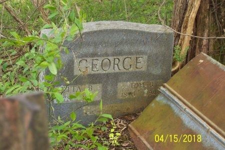 GEORGE, TOM B. - Lincoln County, Tennessee | TOM B. GEORGE - Tennessee Gravestone Photos