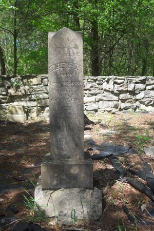 GILES, SALLIE A. - Lincoln County, Tennessee | SALLIE A. GILES - Tennessee Gravestone Photos