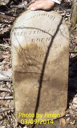 GROCE, MARY ANN - Lincoln County, Tennessee | MARY ANN GROCE - Tennessee Gravestone Photos