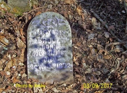 GROCE, MARY F. - Lincoln County, Tennessee | MARY F. GROCE - Tennessee Gravestone Photos