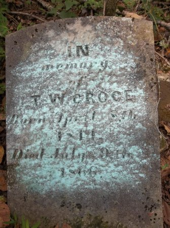 GROCE, T. W. - Lincoln County, Tennessee   T. W. GROCE - Tennessee Gravestone Photos