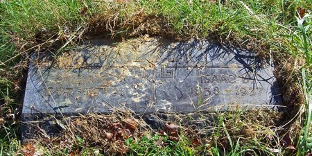HALBERT, LAURA - Lincoln County, Tennessee | LAURA HALBERT - Tennessee Gravestone Photos