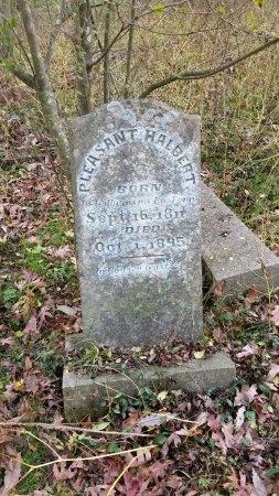 HALBERT, PLEASANT - Lincoln County, Tennessee   PLEASANT HALBERT - Tennessee Gravestone Photos
