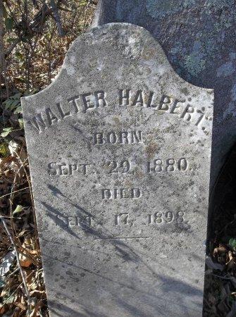 HALBERT, WALTER - Lincoln County, Tennessee   WALTER HALBERT - Tennessee Gravestone Photos
