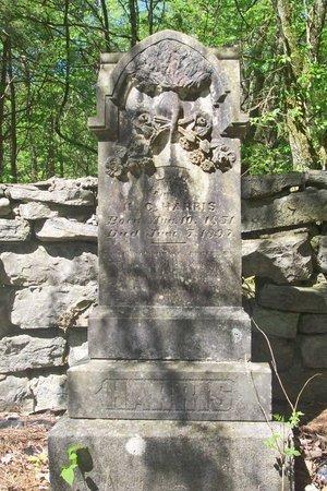 GILES HARRIS, J. URSULA - Lincoln County, Tennessee | J. URSULA GILES HARRIS - Tennessee Gravestone Photos