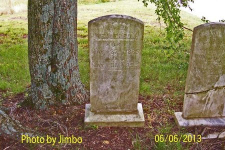 HENDERSON, HENRY - Lincoln County, Tennessee | HENRY HENDERSON - Tennessee Gravestone Photos