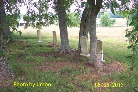 *HENDERSON OVERVIEW,  - Lincoln County, Tennessee |  *HENDERSON OVERVIEW - Tennessee Gravestone Photos
