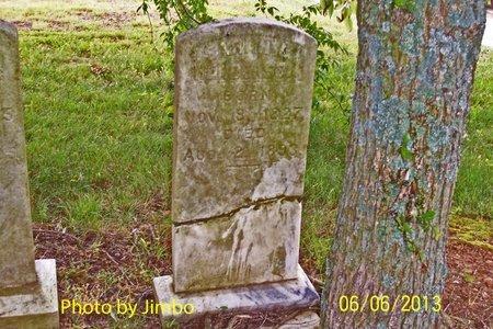 "HENDERSON, SARAH ELIZABETH ""SALLY"" - Lincoln County, Tennessee | SARAH ELIZABETH ""SALLY"" HENDERSON - Tennessee Gravestone Photos"