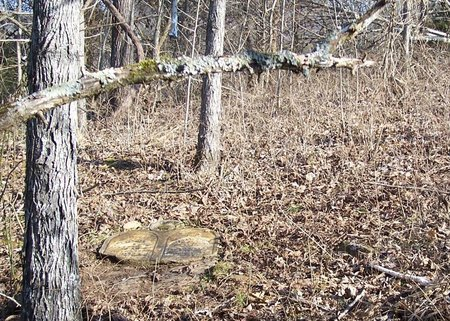 *HESTER VIEW 1,  - Lincoln County, Tennessee |  *HESTER VIEW 1 - Tennessee Gravestone Photos