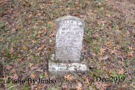 MCCLELLAN HULSEY, JULIA ELIZABETH - Lincoln County, Tennessee | JULIA ELIZABETH MCCLELLAN HULSEY - Tennessee Gravestone Photos