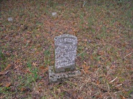 HULSEY, JULIA GRACIE - Lincoln County, Tennessee | JULIA GRACIE HULSEY - Tennessee Gravestone Photos