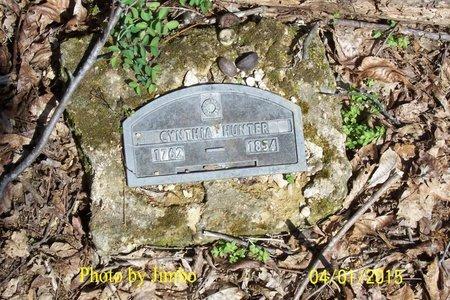 HUNTER, CYNTHIA - Lincoln County, Tennessee | CYNTHIA HUNTER - Tennessee Gravestone Photos