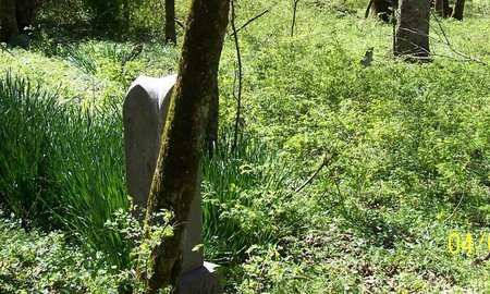 *KIMES OVERVIEW 2,  - Lincoln County, Tennessee |  *KIMES OVERVIEW 2 - Tennessee Gravestone Photos