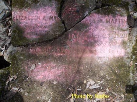 MARTIN, ELIZABEH A. (CLOSE UP) - Lincoln County, Tennessee | ELIZABEH A. (CLOSE UP) MARTIN - Tennessee Gravestone Photos