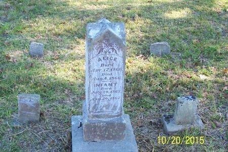 MCADAMS, ALICE - Lincoln County, Tennessee | ALICE MCADAMS - Tennessee Gravestone Photos