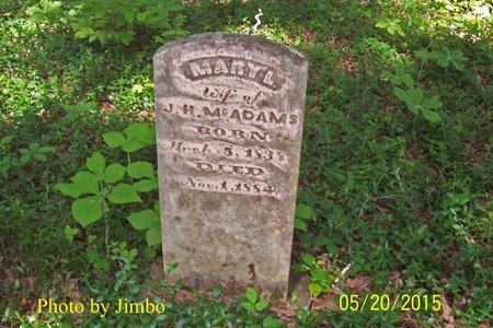 MCADAMS, MARY L. - Lincoln County, Tennessee | MARY L. MCADAMS - Tennessee Gravestone Photos