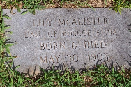 MCALISTER, LILY - Lincoln County, Tennessee | LILY MCALISTER - Tennessee Gravestone Photos