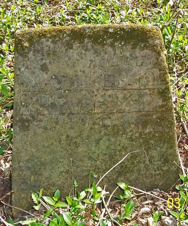 MILLS, LOUISA M. - Lincoln County, Tennessee | LOUISA M. MILLS - Tennessee Gravestone Photos