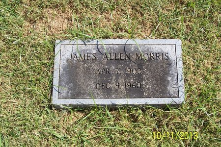 MORRIS, JAMES ALLEN - Lincoln County, Tennessee | JAMES ALLEN MORRIS - Tennessee Gravestone Photos