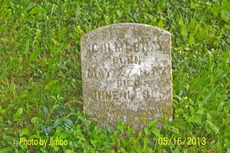MURRAY, D. H. - Lincoln County, Tennessee | D. H. MURRAY - Tennessee Gravestone Photos
