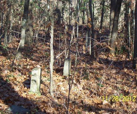 *OVERVIEW 2,  - Lincoln County, Tennessee |  *OVERVIEW 2 - Tennessee Gravestone Photos