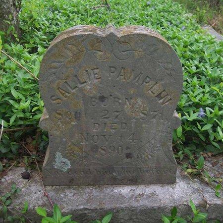 PAMPLIN, SALLIE - Lincoln County, Tennessee   SALLIE PAMPLIN - Tennessee Gravestone Photos