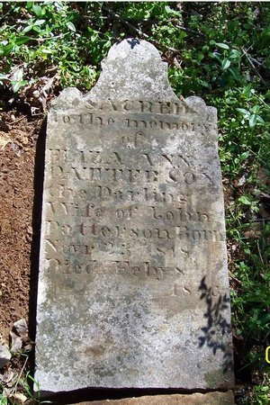 PATTERSON, ELIZA ANN - Lincoln County, Tennessee | ELIZA ANN PATTERSON - Tennessee Gravestone Photos