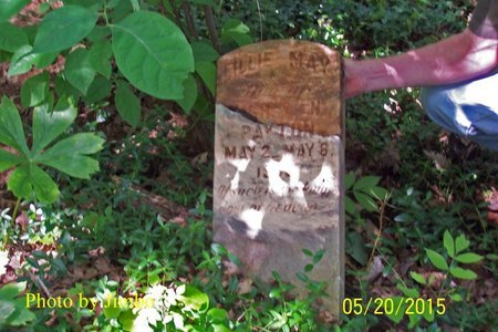 PAYTON, LILLIE MAY - Lincoln County, Tennessee | LILLIE MAY PAYTON - Tennessee Gravestone Photos