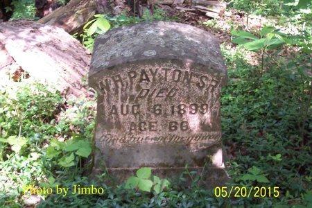 PAYTON, SR., W. H. - Lincoln County, Tennessee | W. H. PAYTON, SR. - Tennessee Gravestone Photos