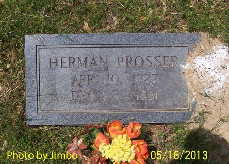 PROSSER, HERMAN - Lincoln County, Tennessee | HERMAN PROSSER - Tennessee Gravestone Photos