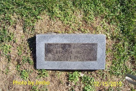 PROSSER, LAVOY L. - Lincoln County, Tennessee | LAVOY L. PROSSER - Tennessee Gravestone Photos