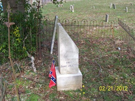 PROSSER, LOUISA JANE - Lincoln County, Tennessee | LOUISA JANE PROSSER - Tennessee Gravestone Photos