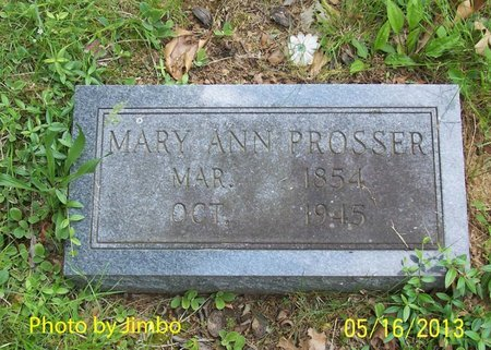 PROSSER, MARY ANN - Lincoln County, Tennessee   MARY ANN PROSSER - Tennessee Gravestone Photos