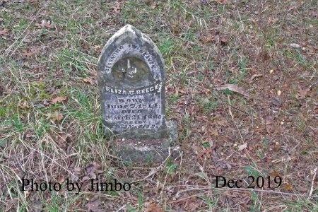REECE, ELIZA C. - Lincoln County, Tennessee | ELIZA C. REECE - Tennessee Gravestone Photos